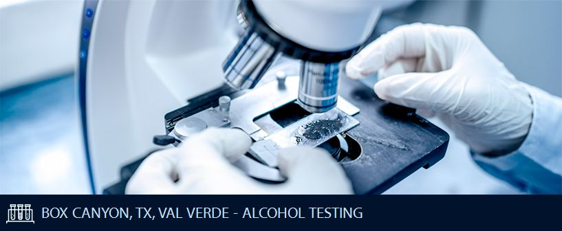 BOX CANYON TX VAL VERDE ALCOHOL TESTING