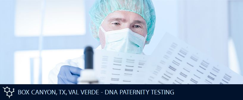 BOX CANYON TX VAL VERDE DNA PATERNITY TESTING
